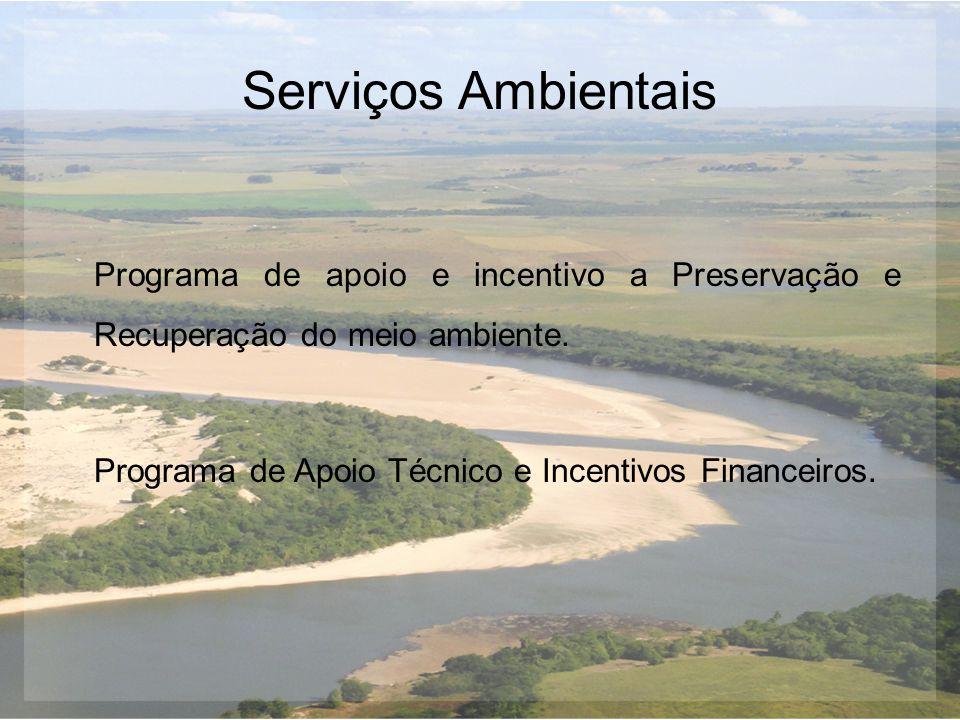 Serviços Ambientais Programa de apoio e incentivo a Preservação e Recuperação do meio ambiente. Programa de Apoio Técnico e Incentivos Financeiros.