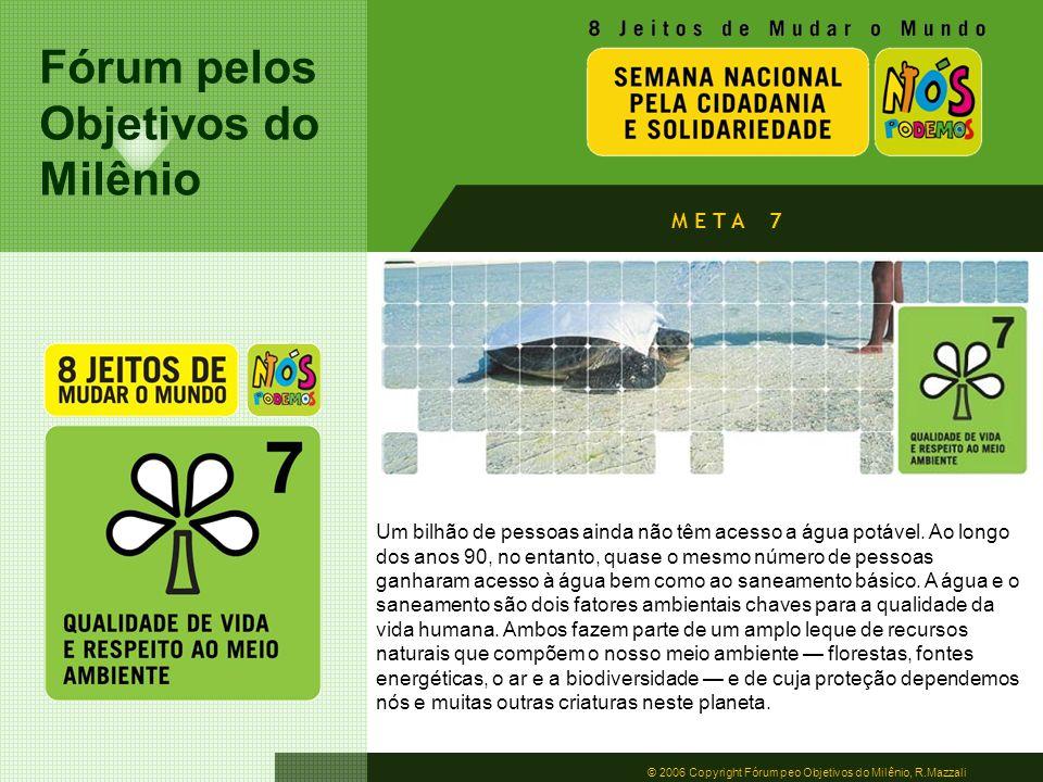 Fórum pelos Objetivos do Milênio © 2006 Copyright Fórum peo Objetivos do Milênio, R.Mazzali M E T A 7 Um bilhão de pessoas ainda não têm acesso a água