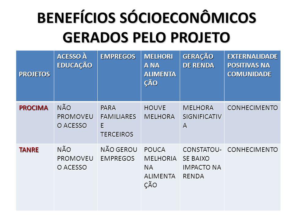 BENEFÍCIOS SÓCIOECONÔMICOS GERADOS PELO PROJETO PROJETOS ACESSO À EDUCAÇÃO EMPREGOS MELHORI A NA ALIMENTA ÇÃO GERAÇÃO DE RENDA EXTERNALIDADE POSITIVAS