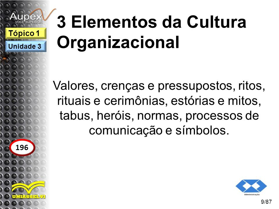 3 Elementos da Cultura Organizacional Valores, crenças e pressupostos, ritos, rituais e cerimônias, estórias e mitos, tabus, heróis, normas, processos