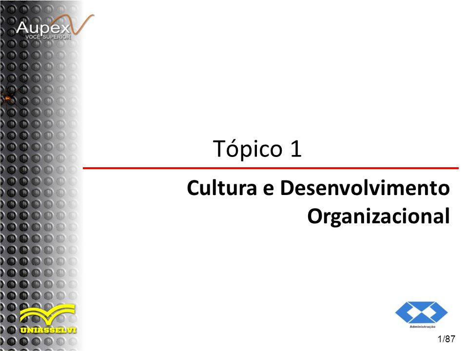 1/87 Tópico 1 Cultura e Desenvolvimento Organizacional