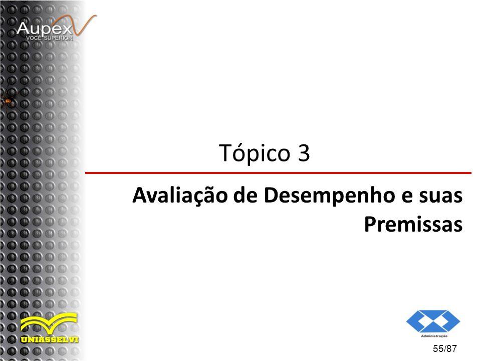55/87 Tópico 3 Avaliação de Desempenho e suas Premissas