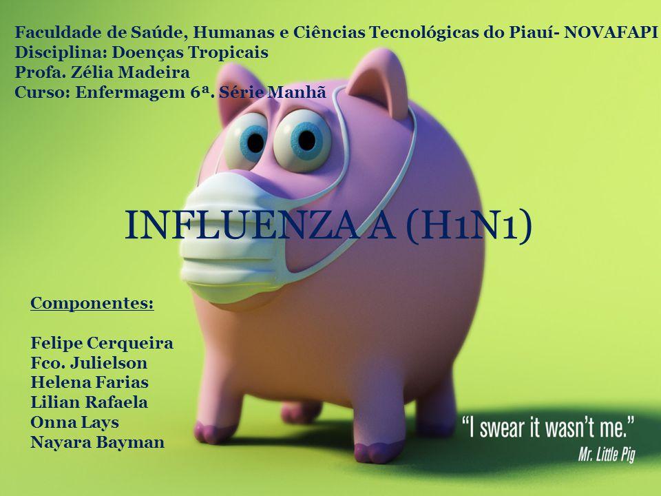 Faculdade de Saúde, Humanas e Ciências Tecnológicas do Piauí- NOVAFAPI Disciplina: Doenças Tropicais Profa. Zélia Madeira Curso: Enfermagem 6ª. Série