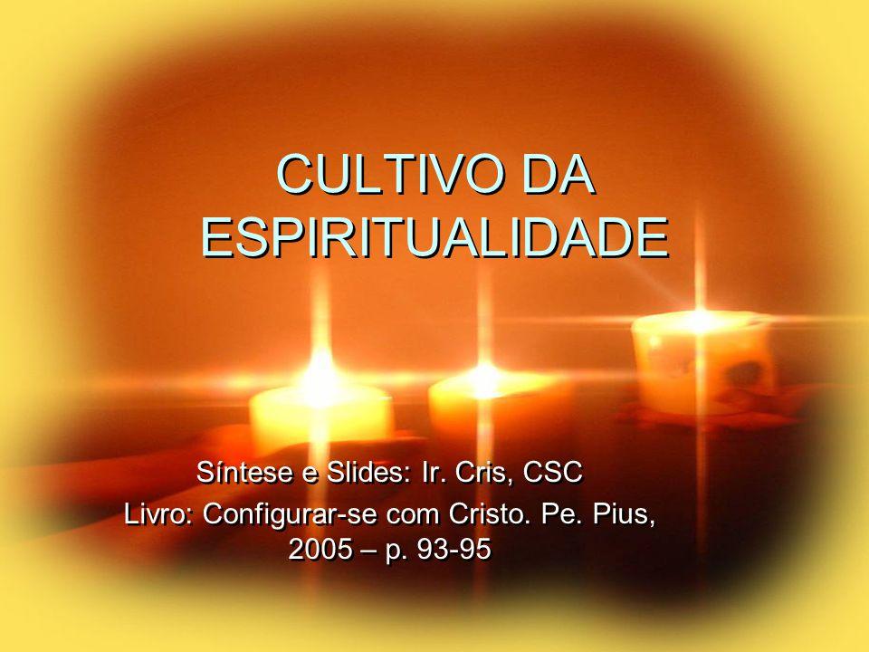 CULTIVO DA ESPIRITUALIDADE Síntese e Slides: Ir. Cris, CSC Livro: Configurar-se com Cristo.