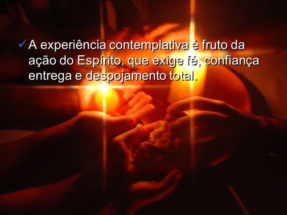 A experiência contemplativa é fruto da ação do Espírito, que exige fé, confiança entrega e despojamento total.