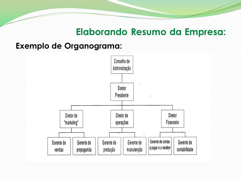 Elaborando Resumo da Empresa: Exemplo de Organograma: