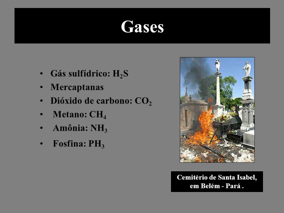 Gases Gás sulfídrico: H 2 S Mercaptanas Dióxido de carbono: CO 2 Metano: CH 4 Amônia: NH 3 Fosfina: PH 3 Cemitério de Santa Isabel, em Belém - Pará. G