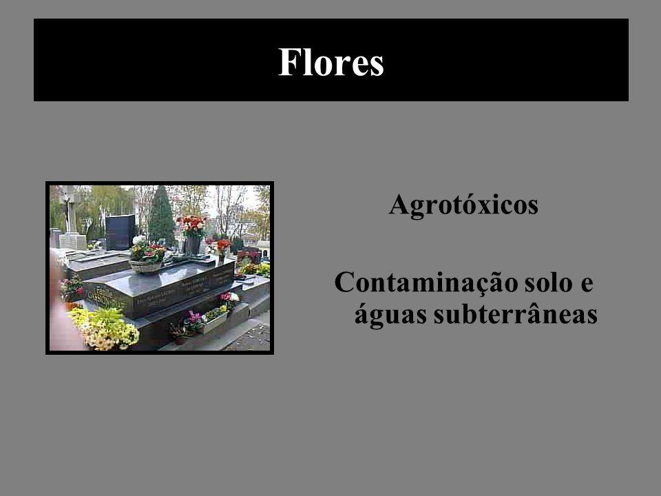 Flores Agrotóxicos Contaminação solo e águas subterrâneas