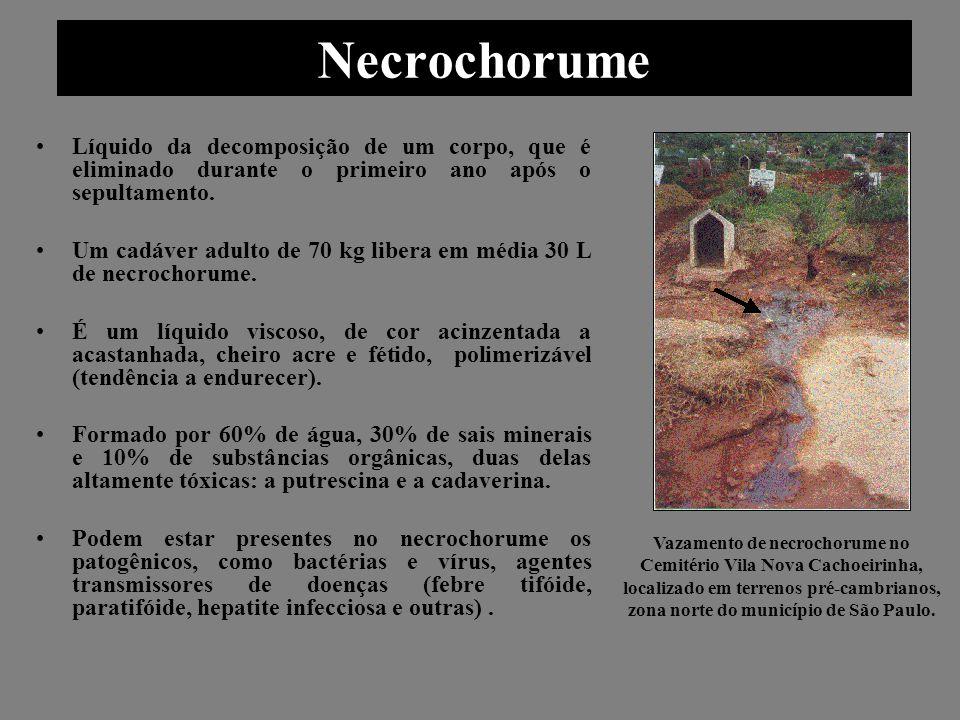 Cemitério Parque São Pedro - Curitiba É o único no Brasil que possui poços de monitoramento e uma malha de drenagem superficial e profunda que abrange os seus 120 mil m 2 de área.