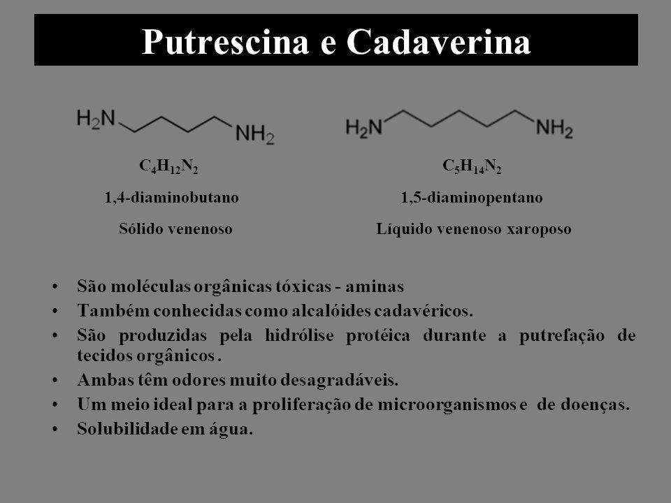 Putrescina e Cadaverina São moléculas orgânicas tóxicas - aminas Também conhecidas como alcalóides cadavéricos. São produzidas pela hidrólise protéica