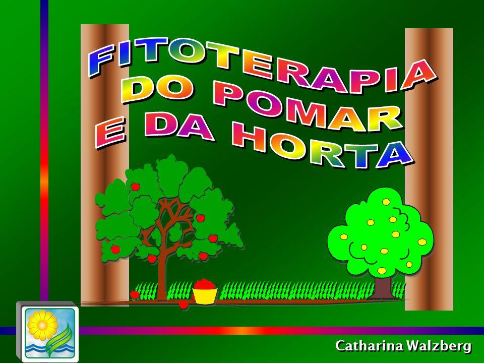 Catharina Walzberg A fitoterapia do pomar e da horta é uma alternativa formidável para permanecer saudável sem suplementos artificiais!!!