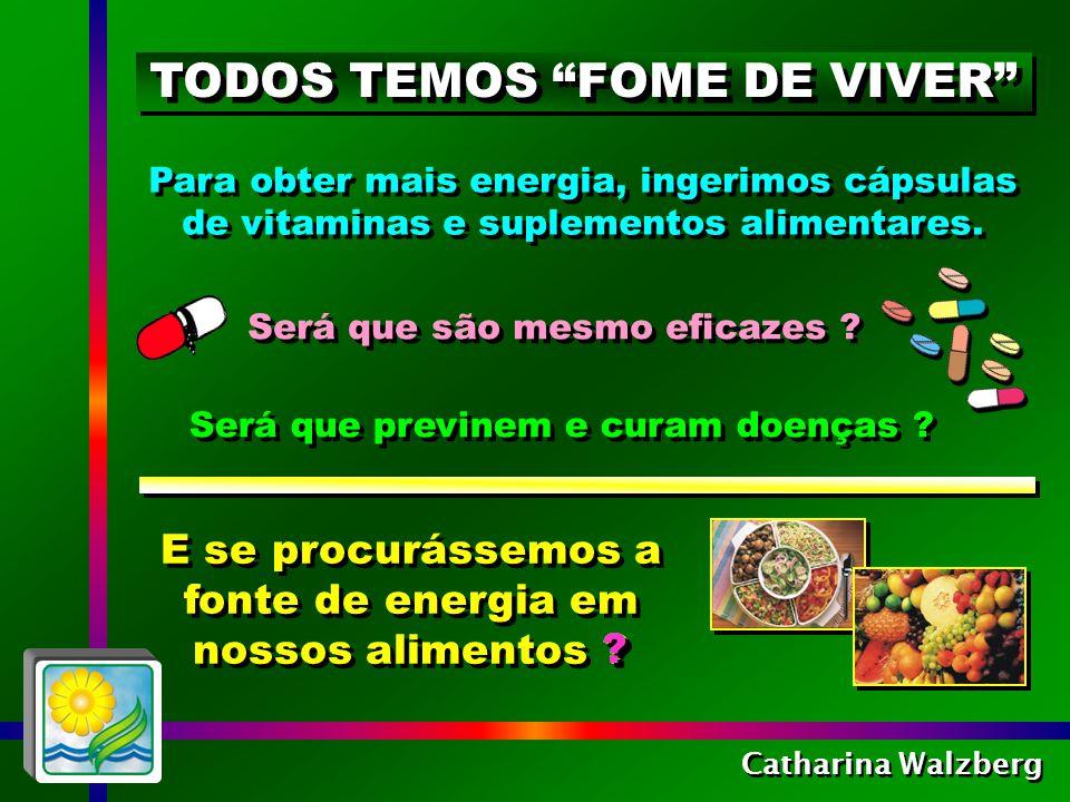 Catharina Walzberg No Instituto de Saúde dos EUA, 10.000 pesquisas comprovam o poder medicinal dos alimentos, proveniente do conteúdo de centenas de vitaminas, minerais, enzimas, fitoquímicos e antioxidantes descobertos recentemente.