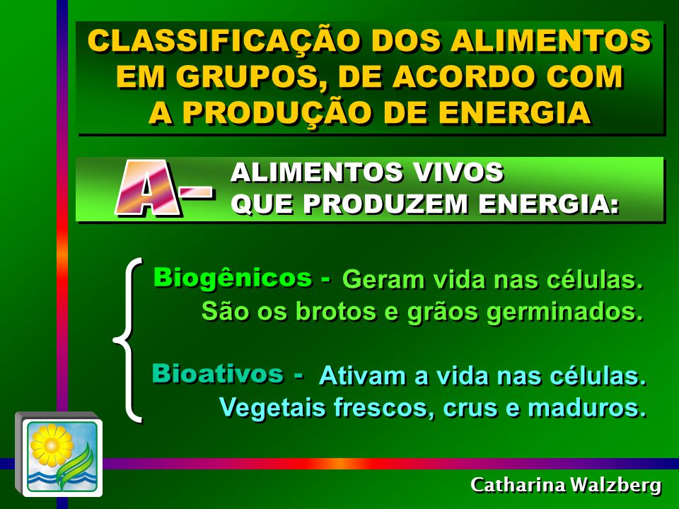 CLASSIFICAÇÃO DOS ALIMENTOS EM GRUPOS, DE ACORDO COM A PRODUÇÃO DE ENERGIA CLASSIFICAÇÃO DOS ALIMENTOS EM GRUPOS, DE ACORDO COM A PRODUÇÃO DE ENERGIA Catharina Walzberg Mantêm o corpo funcionando, mas envelhecem as células, porque não as regeneram.