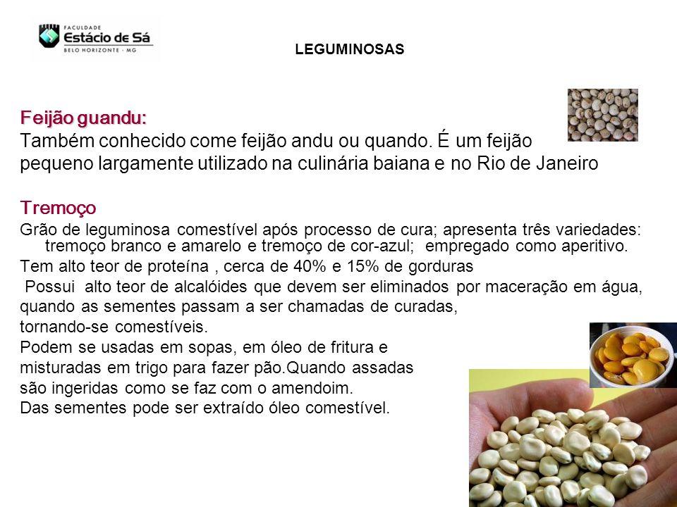 Feijão guandu: Também conhecido come feijão andu ou quando. É um feijão pequeno largamente utilizado na culinária baiana e no Rio de Janeiro Tremoço G