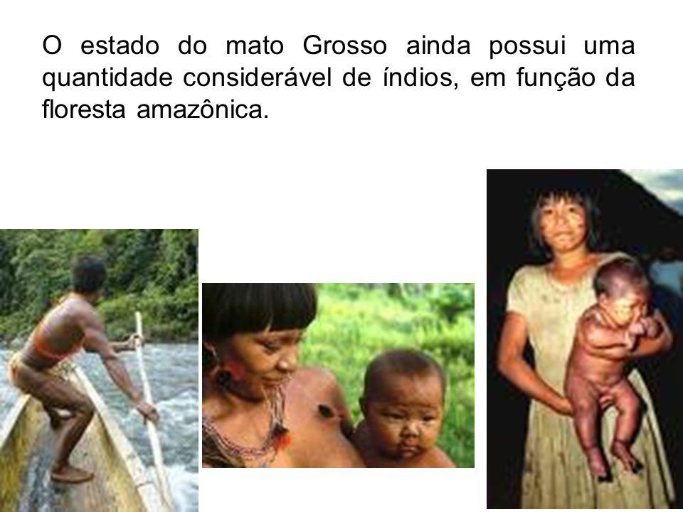 O estado do mato Grosso ainda possui uma quantidade considerável de índios, em função da floresta amazônica.