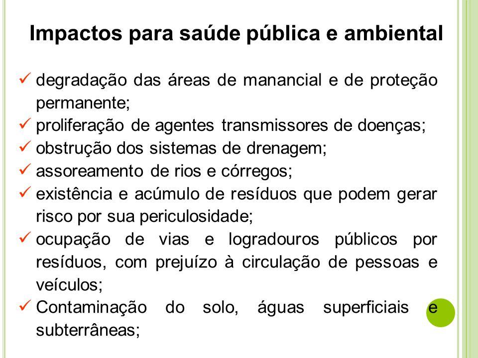 degradação das áreas de manancial e de proteção permanente; proliferação de agentes transmissores de doenças; obstrução dos sistemas de drenagem; asso