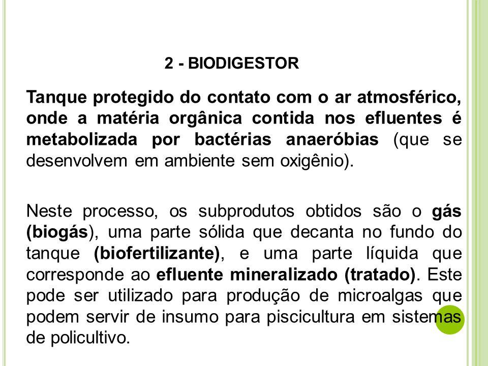 2 - BIODIGESTOR Tanque protegido do contato com o ar atmosférico, onde a matéria orgânica contida nos efluentes é metabolizada por bactérias anaeróbia