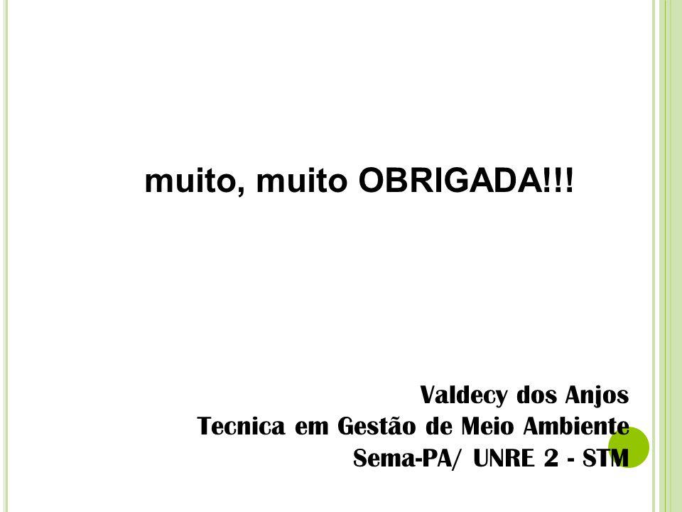 muito, muito OBRIGADA!!! Valdecy dos Anjos Tecnica em Gestão de Meio Ambiente Sema-PA/ UNRE 2 - STM
