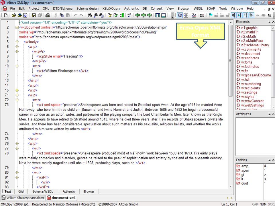 Ecma Open XML format