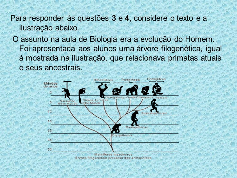 Para responder às questões 3 e 4, considere o texto e a ilustração abaixo. O assunto na aula de Biologia era a evolução do Homem. Foi apresentada aos
