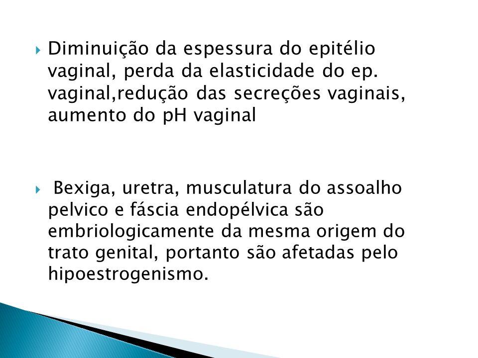  Diminuição da espessura do epitélio vaginal, perda da elasticidade do ep.