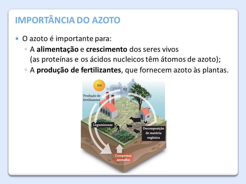 A Atmosfera da Terra IMPORTÂNCIA DO AZOTO O azoto é importante para: ◦ A alimentação e crescimento dos seres vivos (as proteínas e os ácidos nucleicos