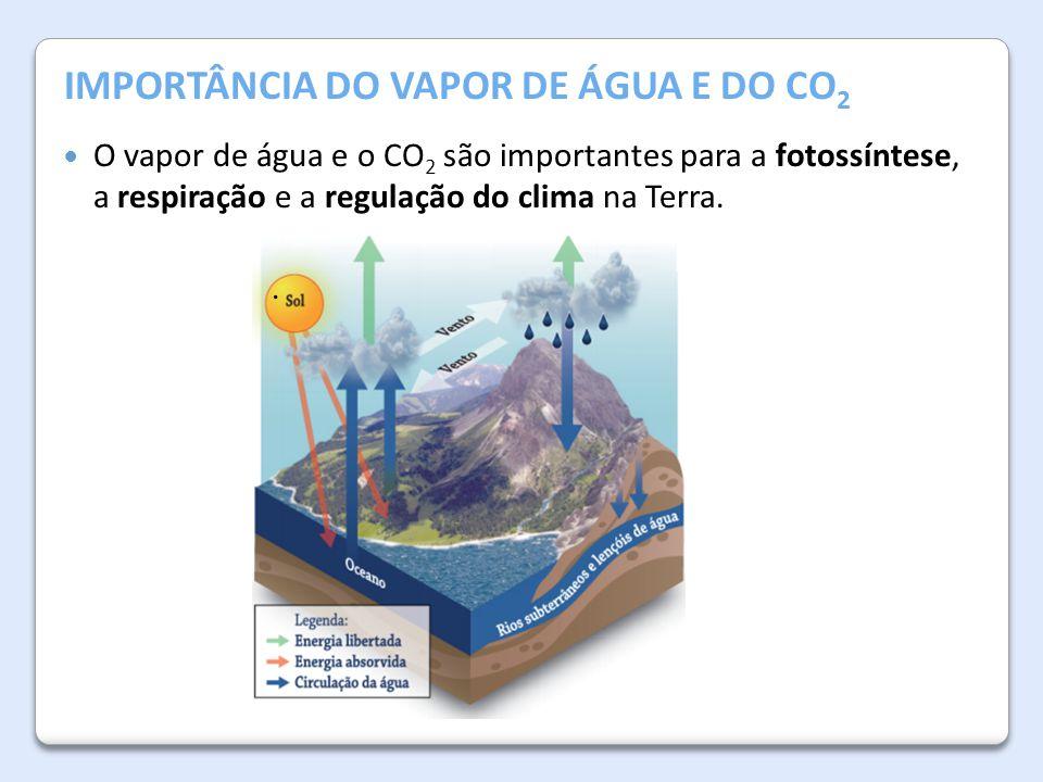 A Atmosfera da Terra IMPORTÂNCIA DO VAPOR DE ÁGUA E DO CO 2. O vapor de água e o CO 2 são importantes para a fotossíntese, a respiração e a regulação