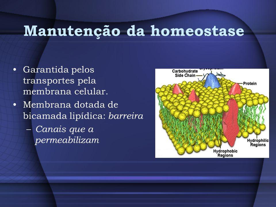 Manutenção da homeostase Garantida pelos transportes pela membrana celular. Membrana dotada de bicamada lipídica: barreira – Canais que a permeabiliza