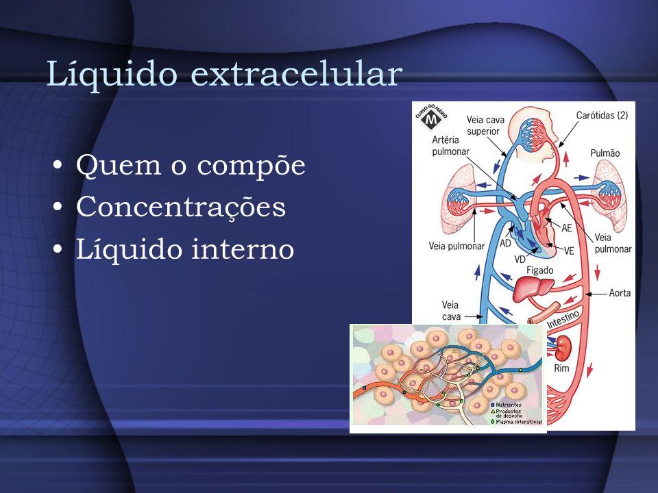 Líquido intracelular Quem o compõe Concentrações Líquido interno