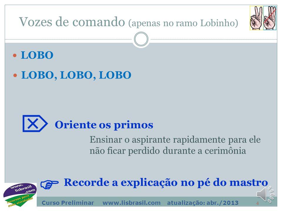 3 Curso Preliminar www.lisbrasil.com atualização: abr./2013 Sinais e vozes de comando ALERTA Recorde a explicação no pé do mastro  FIRME e DESCANSAR