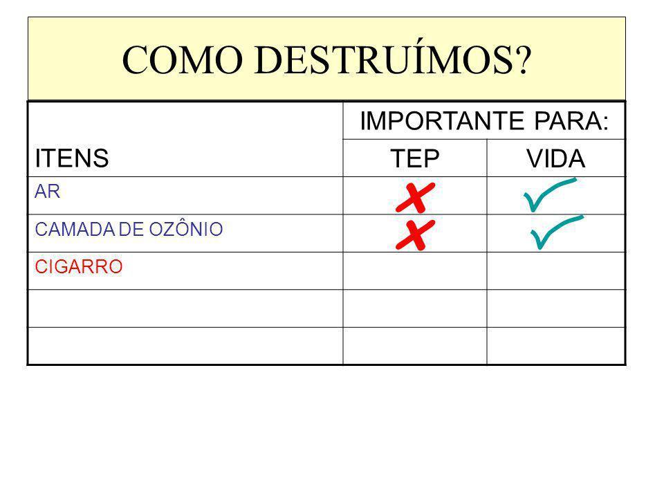 COMO DESTRUÍMOS? ITENS IMPORTANTE PARA: TEPVIDA AR CAMADA DE OZÔNIO CIGARRO x x