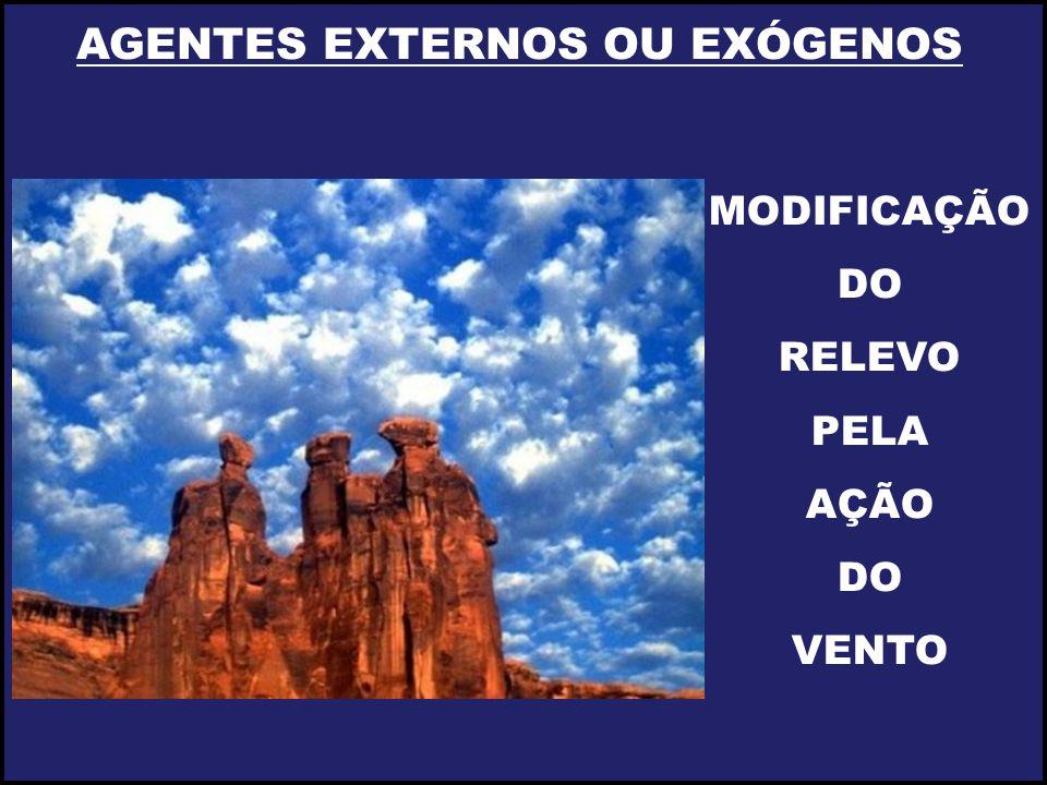 AGENTES EXTERNOS OU EXÓGENOS MODIFICAÇÃO DO RELEVO PELA AÇÃO DO VENTO