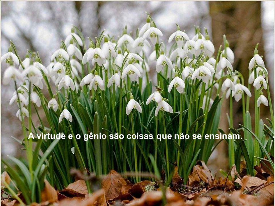 A virtude e o gênio são coisas que não se ensinam.