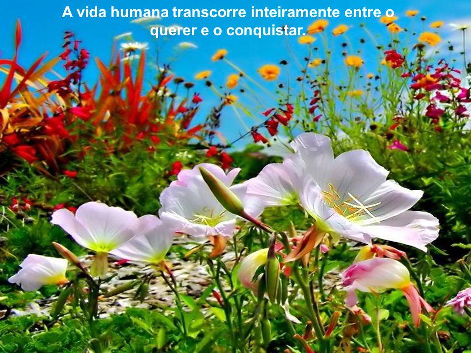 A vida humana transcorre inteiramente entre o querer e o conquistar.