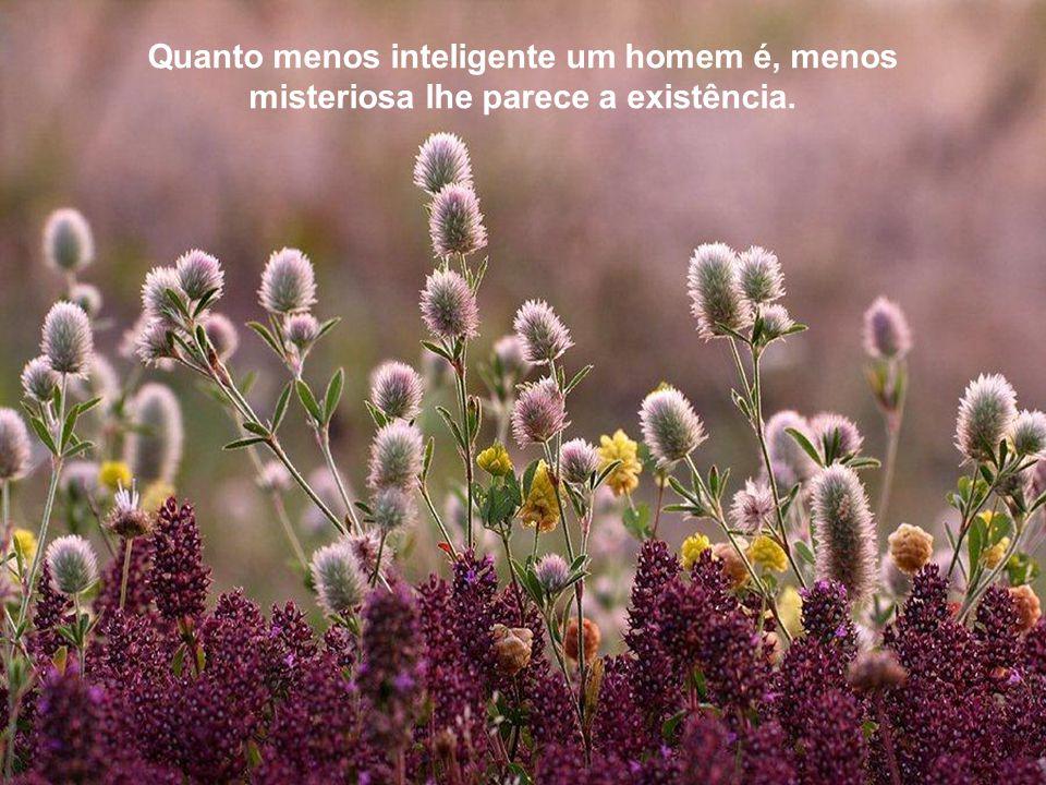 A nossa felicidade depende mais do que temos nas nossas cabeças, do que nos nossos bolsos. -