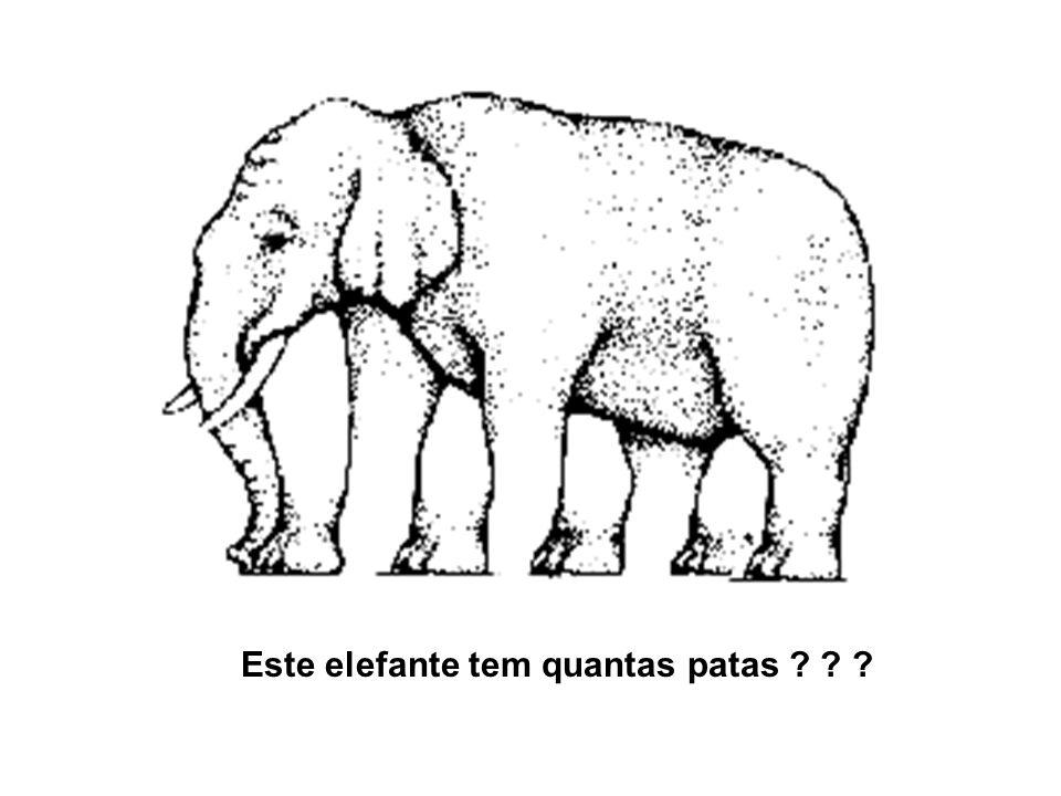 Este elefante tem quantas patas ? ? ?