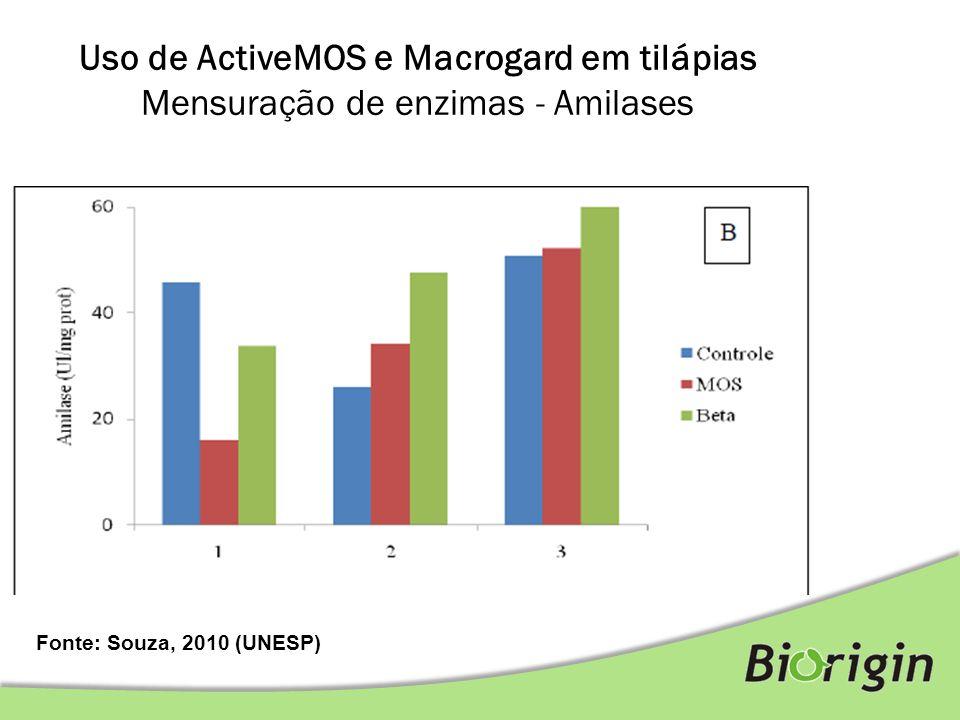 Fonte: Souza, 2010 (UNESP) Uso de ActiveMOS e Macrogard em tilápias Mensuração de enzimas - Amilases