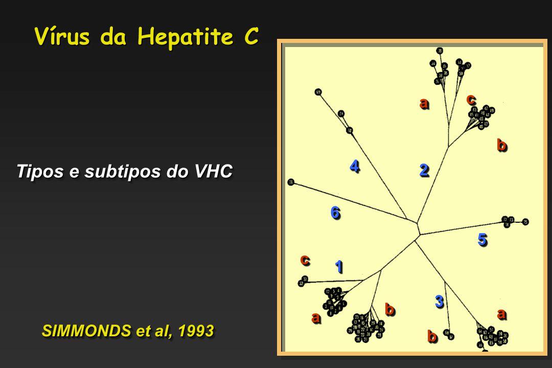 44 22 aa cc bb 66 11 33 55 bb aa bb aa cc Tipos e subtipos do VHC SIMMONDS et al, 1993 Vírus da Hepatite C