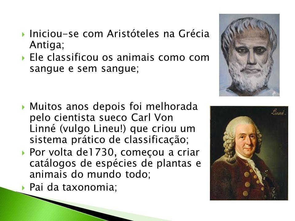  Iniciou-se com Aristóteles na Grécia Antiga;  Ele classificou os animais como com sangue e sem sangue;  Muitos anos depois foi melhorada pelo cien