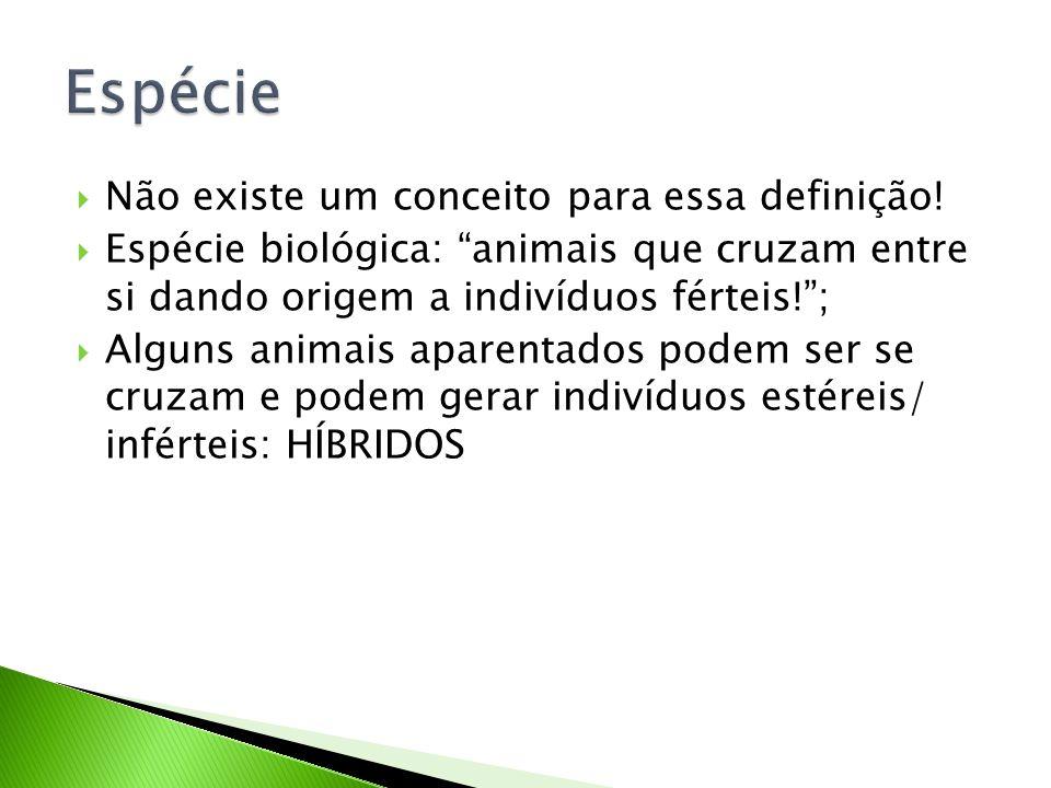 """ Não existe um conceito para essa definição!  Espécie biológica: """"animais que cruzam entre si dando origem a indivíduos férteis!"""";  Alguns animais"""