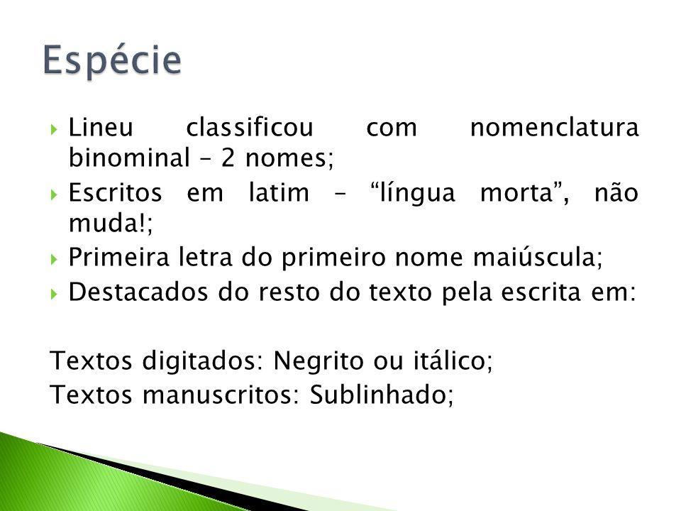 """ Lineu classificou com nomenclatura binominal – 2 nomes;  Escritos em latim – """"língua morta"""", não muda!;  Primeira letra do primeiro nome maiúscula"""