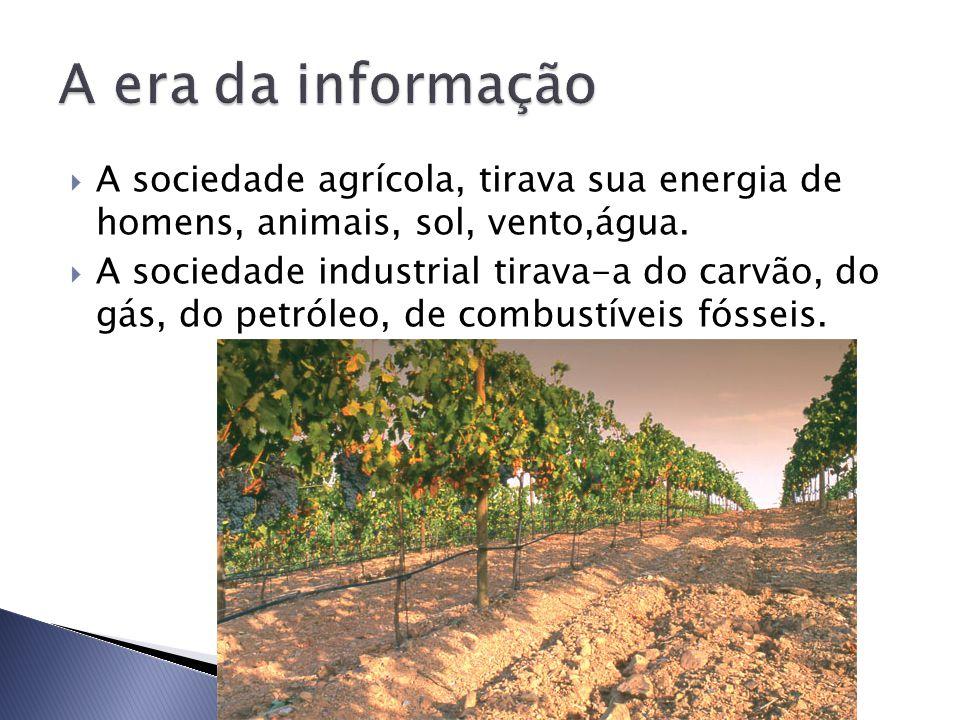  A sociedade agrícola, tirava sua energia de homens, animais, sol, vento,água.