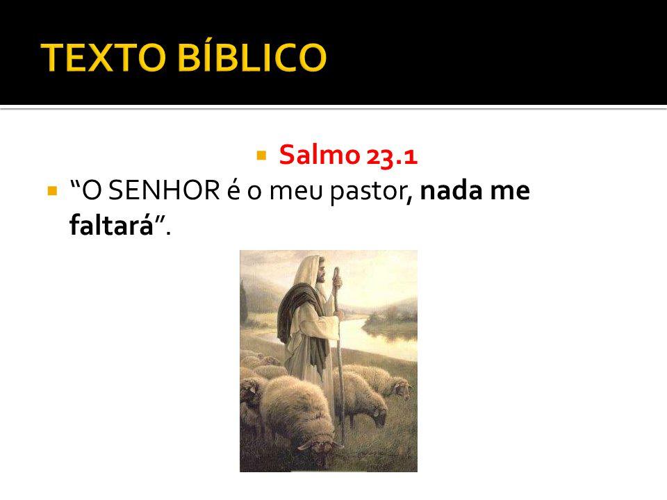  Salmo 23.1  O SENHOR é o meu pastor, nada me faltará .