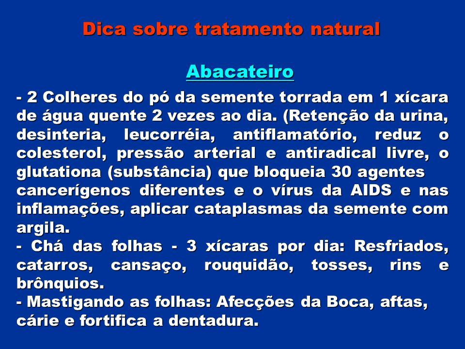 Dica sobre tratamento natural Abacateiro - 2 Colheres do pó da semente torrada em 1 xícara de água quente 2 vezes ao dia. (Retenção da urina, desinter