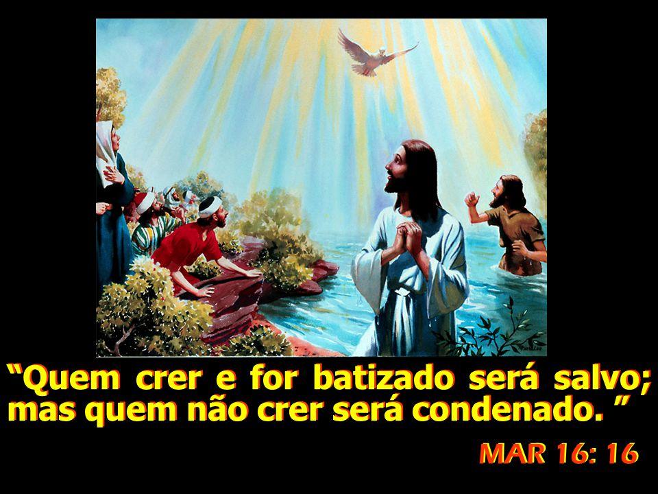"""""""Quem crer e for batizado será salvo; mas quem não crer será condenado. """" """"Quem crer e for batizado será salvo; mas quem não crer será condenado. """" MA"""