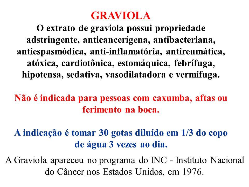 GRAVIOLA O extrato de graviola possui propriedade adstringente, anticancerígena, antibacteriana, antiespasmódica, anti-inflamatória, antireumática, at