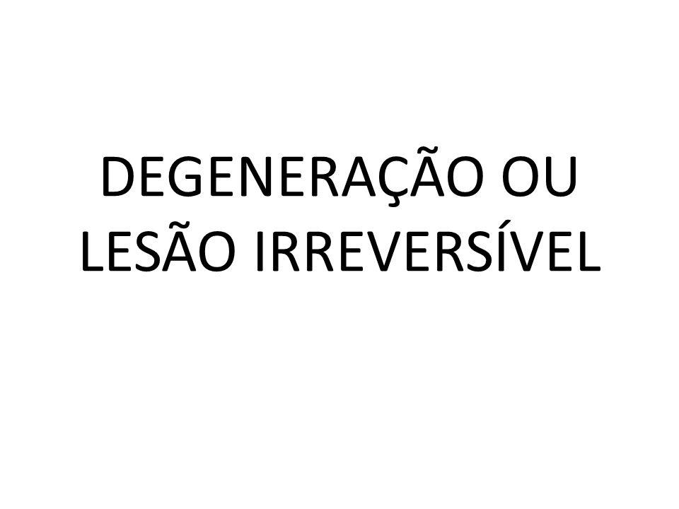 DEGENERAÇÃO OU LESÃO IRREVERSÍVEL