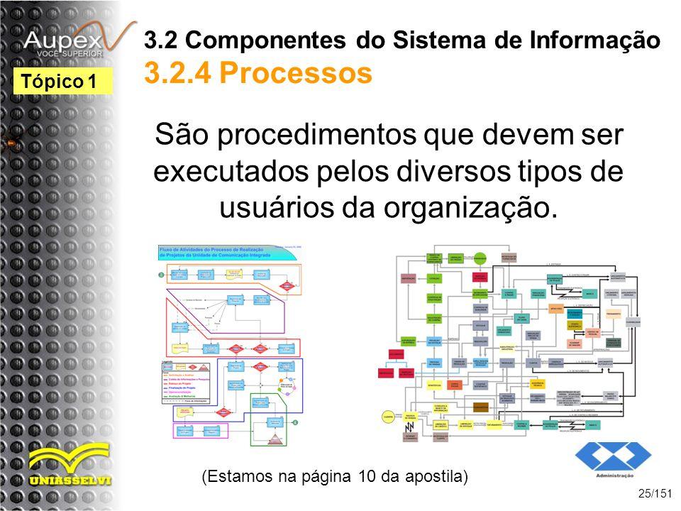 3.2 Componentes do Sistema de Informação 3.2.4 Processos São procedimentos que devem ser executados pelos diversos tipos de usuários da organização. (