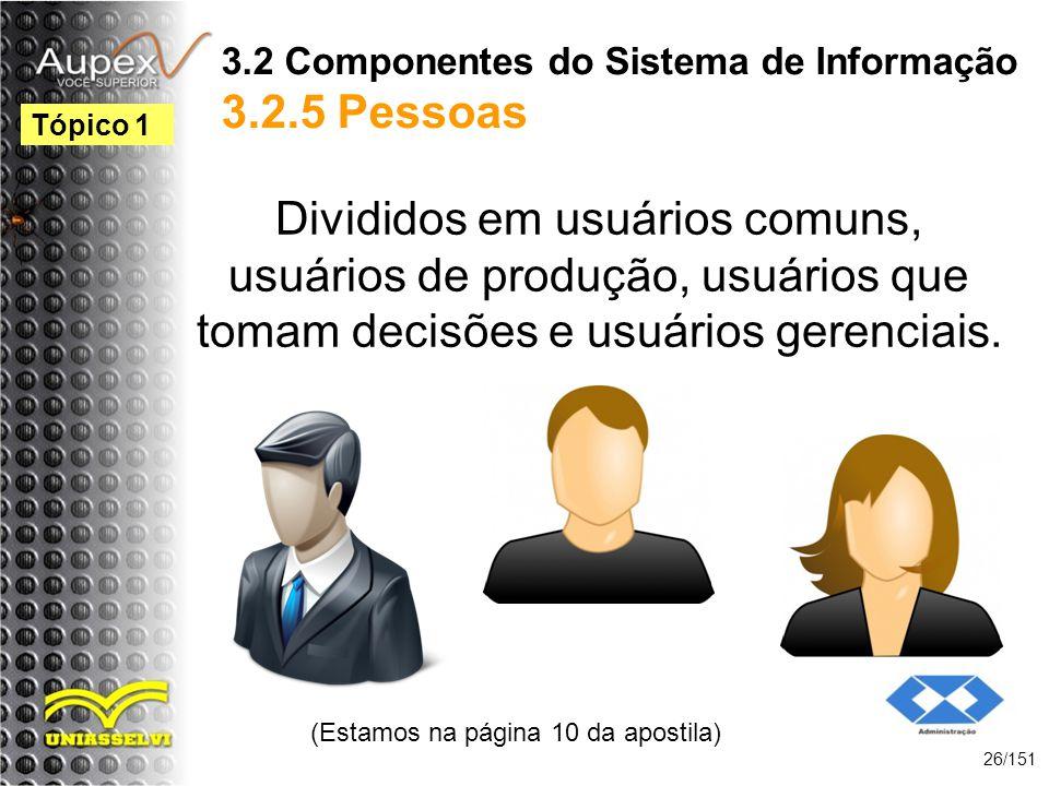 3.2 Componentes do Sistema de Informação 3.2.5 Pessoas Divididos em usuários comuns, usuários de produção, usuários que tomam decisões e usuários gere