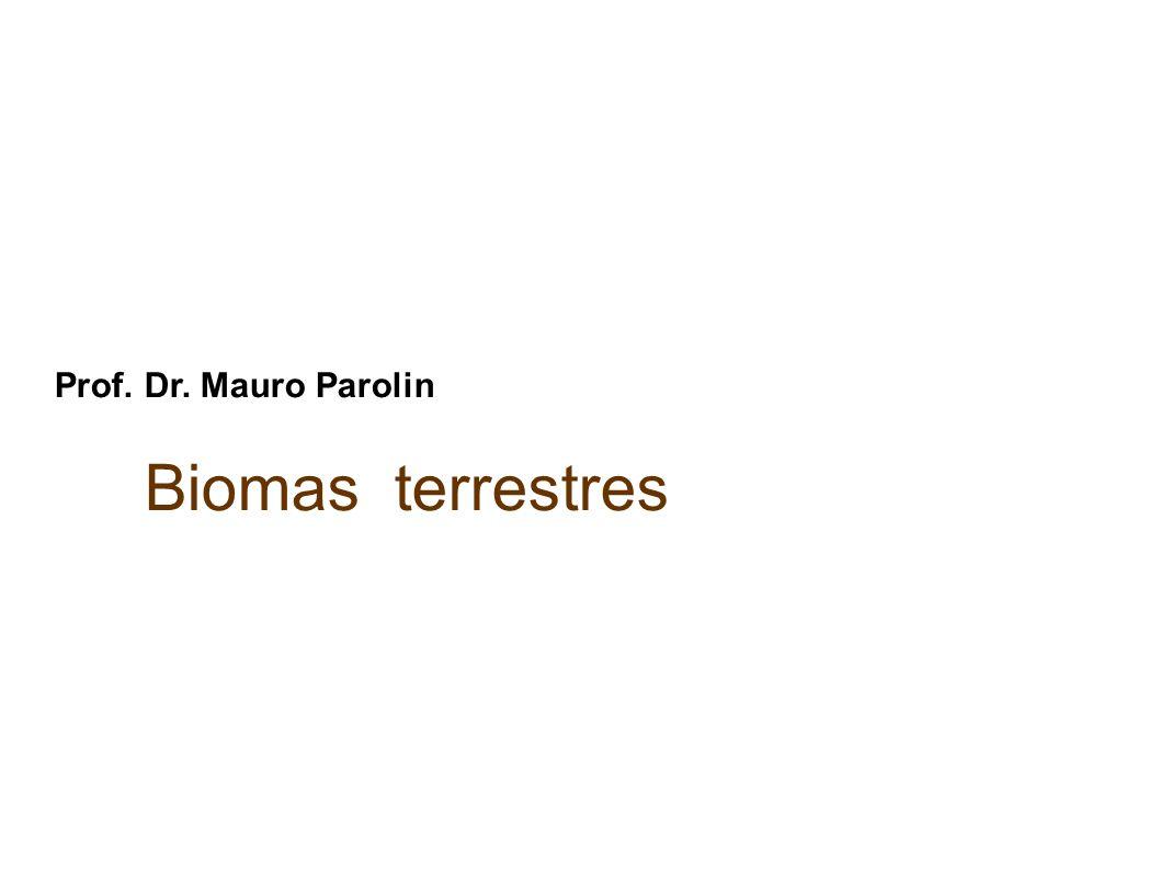 Bioma é um conjunto de ecossistemas constituído por características (fauna e flora) fisionômicas de vegetação semelhantes em determinada região.